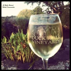 Duck Vineyards